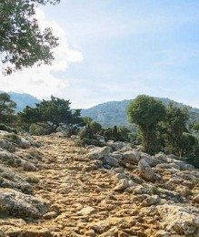 Walking on ancient trails, at the Plateau of Katharo